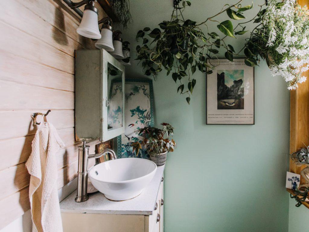 Hanging plants over bathroom sink.
