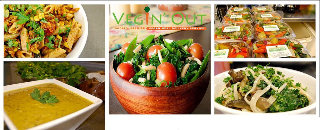 Plant-Based-Delivery-Vegin-Out