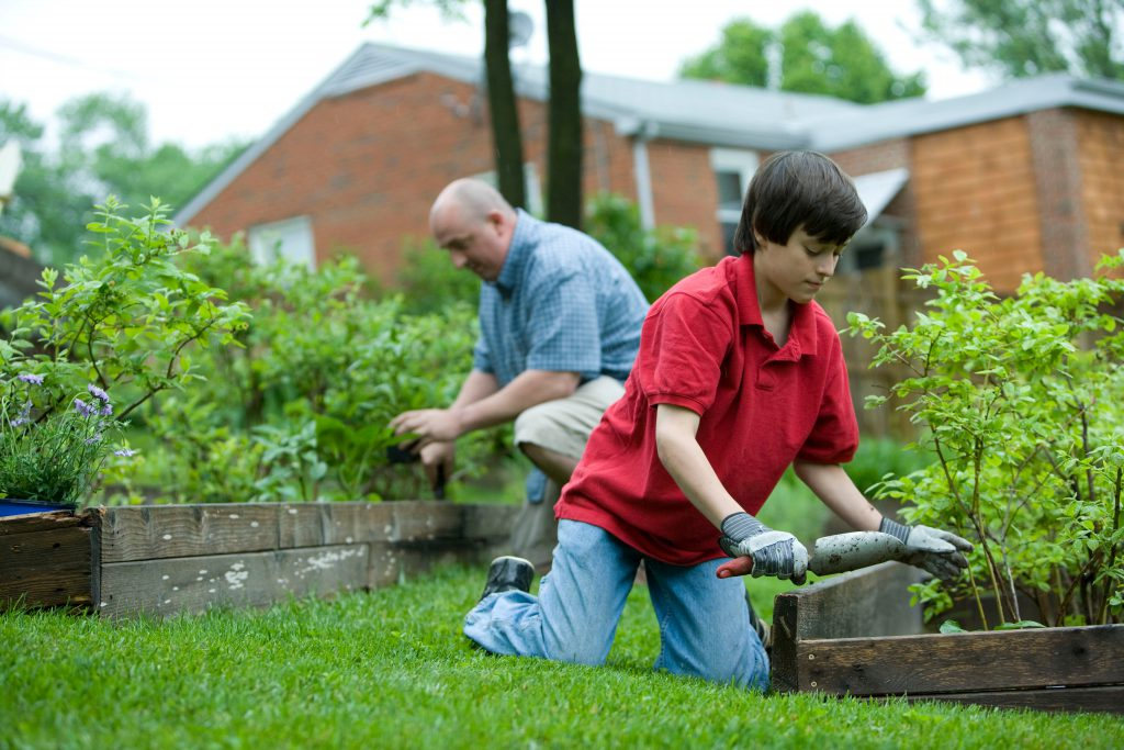 gardening-activity