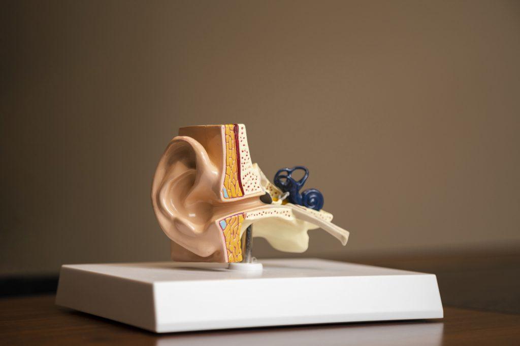 ear-canal
