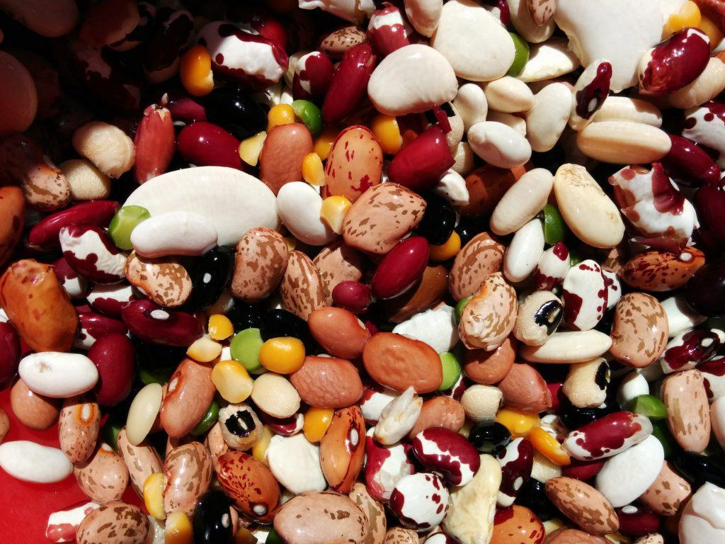 dry-beans