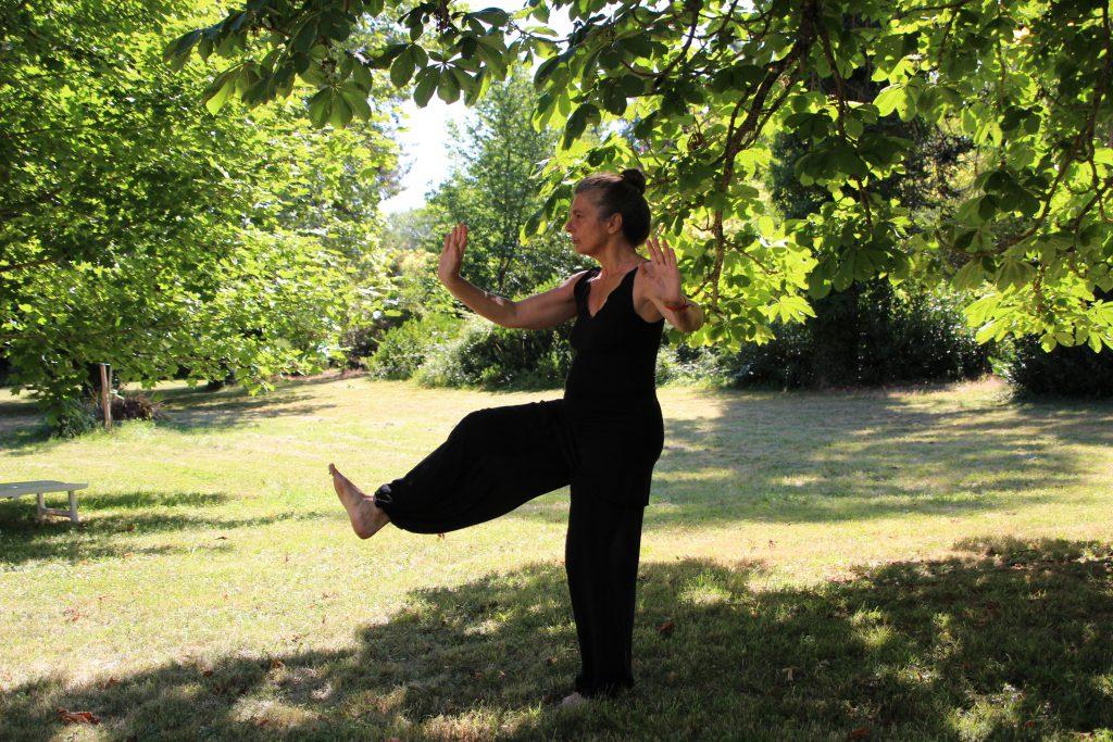 balance-training-tai-chi