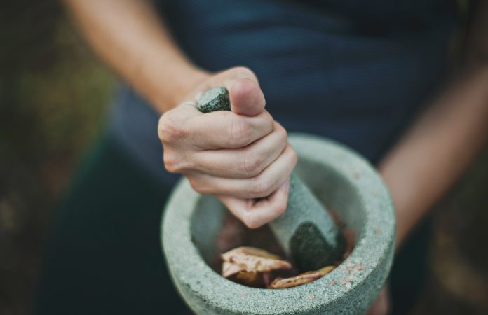 All About Ayahuasca: Retreats, Trips & The Truth